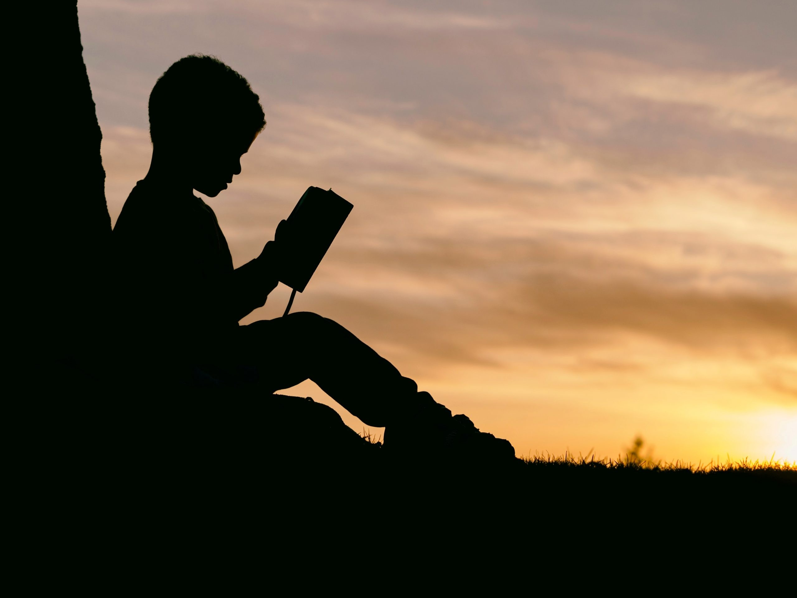 Why Stories Help Learning